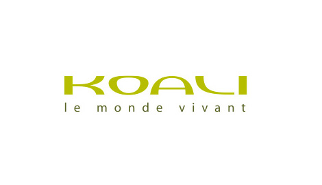 Koali Eyeglasses